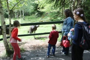 Hos Emuan!