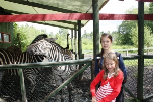 Malin, Miriam og  to Zebra'a!