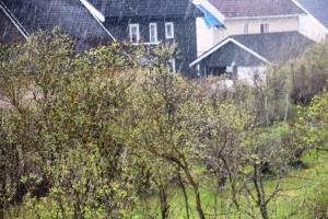Bonusværbilde 2 Og med dunder og brak vær følger gjerne masse regn...