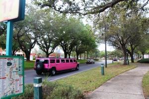 Tilbake i I-drive, en Rosa limo! :D