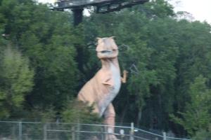 Den her va ikke i Busch Gardens, dæm har mange rare dyr der men ikke sånne her. Den her stakk ut av skogen et sted langs i4 mellom Tampa og Orlando.