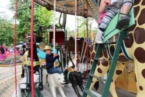 Kjører den gammeldagse karusellen!