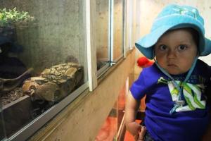 Noah e litt skeptisk til den slangen...