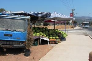 Man kunne kjøpe seg melon rett borti veien, mellom oss og Kipa.