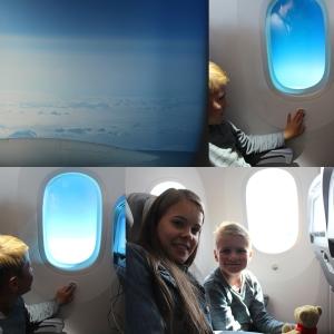 Fløy over Grønland. Vinduan på flyet hadde ikke luke, de hadde Dimming.