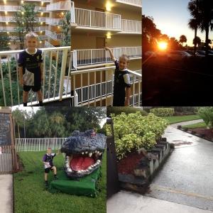 Her bodde vi. International Palms Resort. Der var det både alligatorer og Ekorn.
