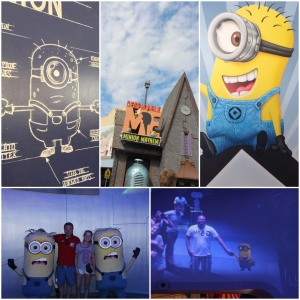 Despicable Me Minion Mayham!