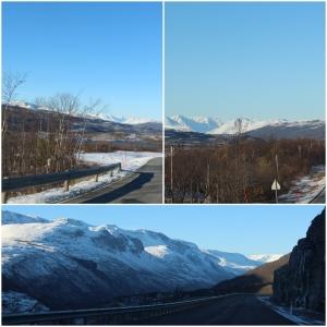 Fin natur i Skibotsdalen!