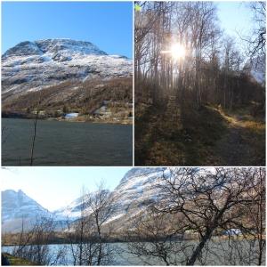 Va å gikk en liten tur rundt Vanne-vannet me Anki og de to minste!