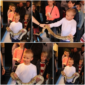 Og Phillip ville å gjerne holde en slange da.. Så det fikk han! :D